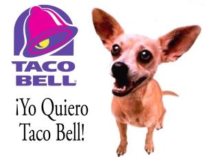 yo-quiero-taco-bell-chihuahua-copy1